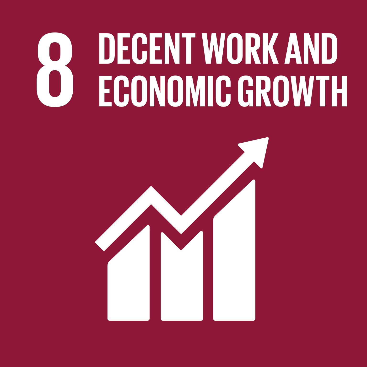 Decent work and economic growth goal 8
