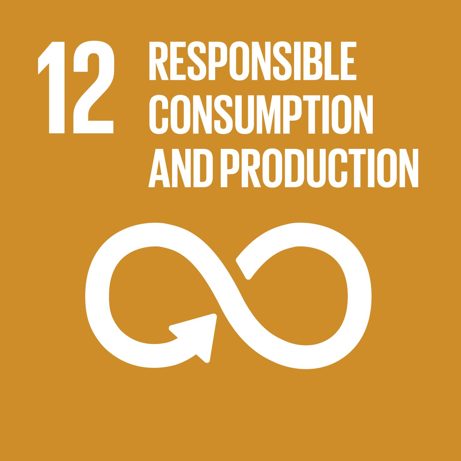 RESPONSIBLE CONSUMPTION AND PRODUCTION GOAL 12